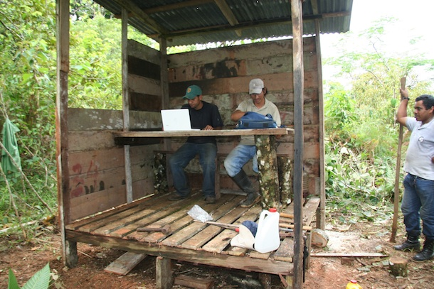 Three parataxonomists and a laptop computer in the small wooden shelter they have just built for rain-free internet access.