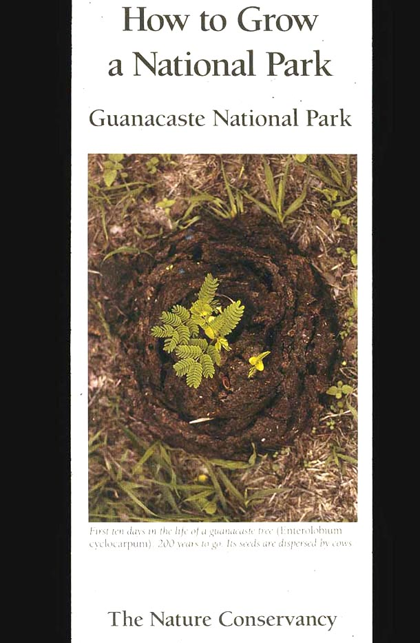 Brochure cover with photo of germinating guanacaste seedlings in a cow pie