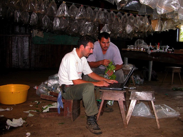 2 young men and a computer working at station Cacao. Behind them hang many clear plastic bags of caterpillars and pupae.